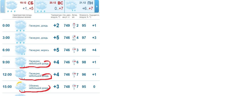 Погода Питер 19 декабря.jpg