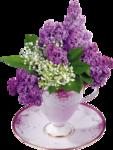 цветы (124).png