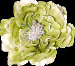 Lilas_Old-Garden_elmt (87).png