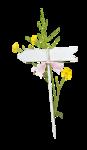 Palvinka_FlowerAdventure_cluster1.png