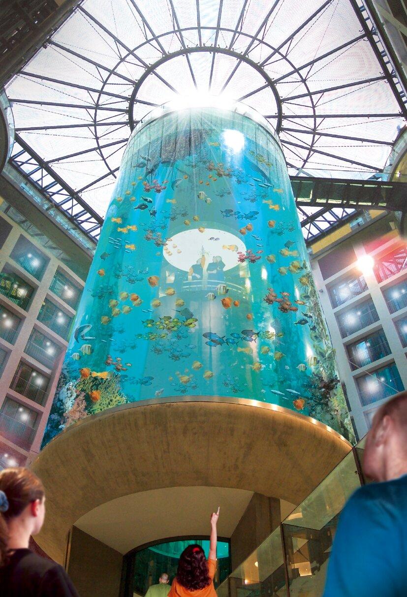 The AquaDom in Berlin, Germany-Rich marine vegetation tourism destinations