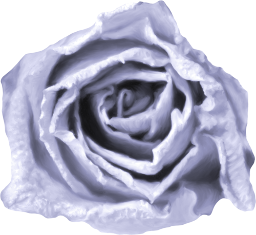«Kimla_LavenderStory» 0_90224_24d7a650_L