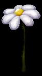 «Charming_Dwarf_Forest» 0_9101b_166ec8c6_S