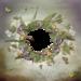 Mystique_Purple_Dream_QP3.png