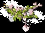 «Dreamin Pink» 0_99ab2_adb7490f_S