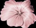 «Dreamin Pink» 0_99b31_2d5379b2_S