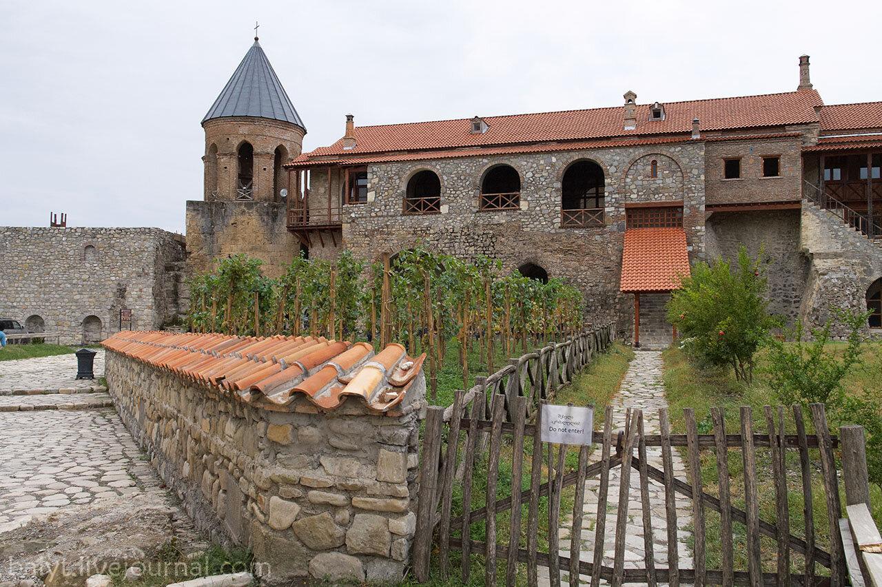 Виноградник во дворе монастыря Алаверди.