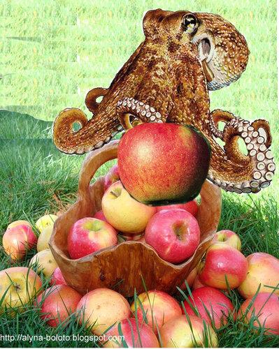 Сборщик яблок