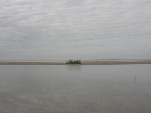 Суровое лето. Пярнусский пляж.