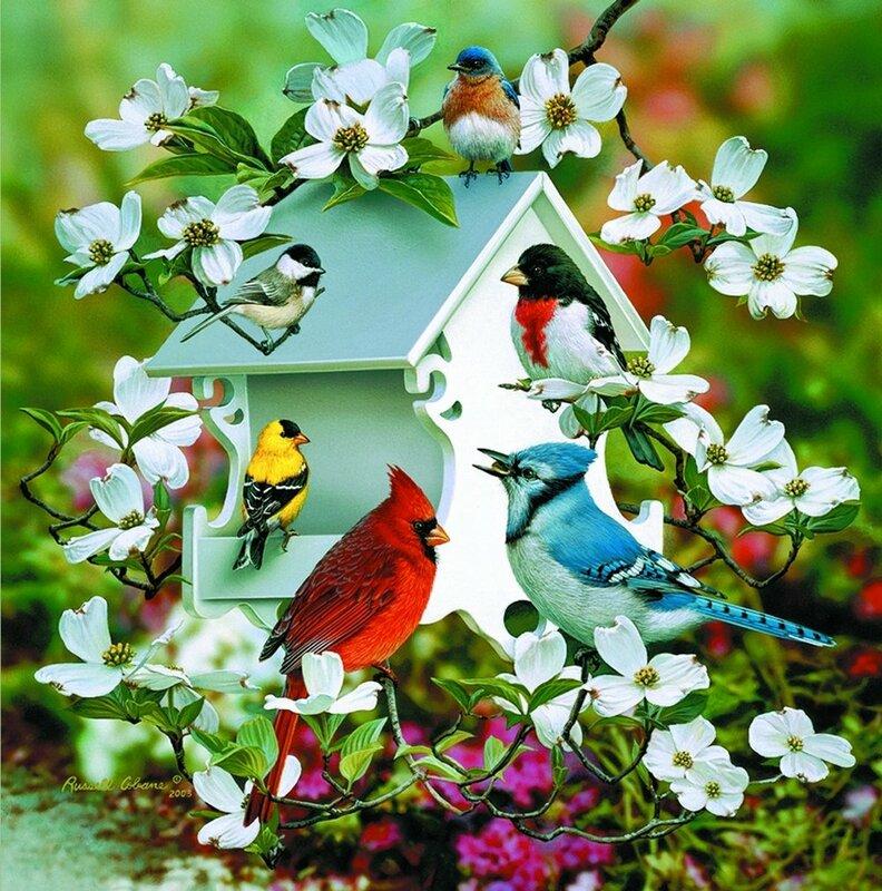 Марка нитей. кормушка.  277x280 крестов. птичий базар 2. цветы.  Теги.  Гамма, 80 цветов. весна. ветка.