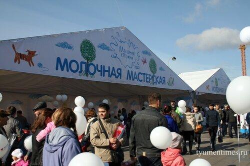 фестиваль молока в Тюмени
