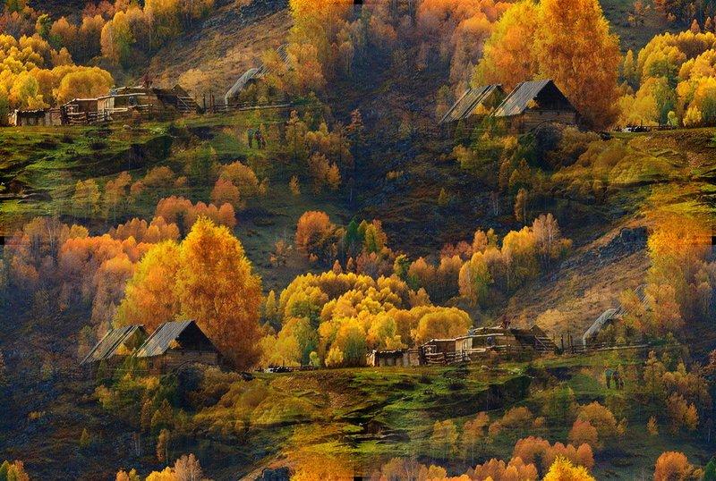 Фоны бесшовные Осень