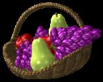 Fruit-Basket-Belle-Graphics.png