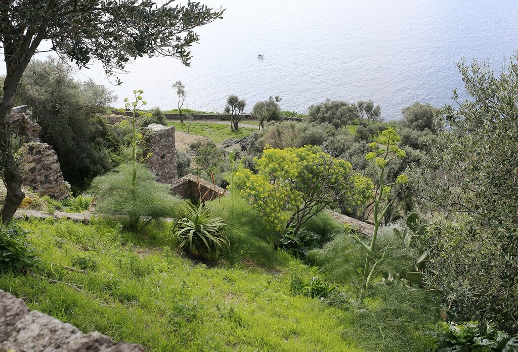 Ischia, the Aragonese castle. The village of St. Nicholas (Borgo di San Nicola)