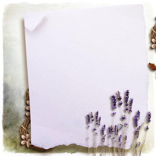 «Kimla_LavenderStory» 0_90203_eeaff56_L