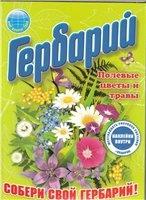Книга Гербарий: Полевые цветы и травы