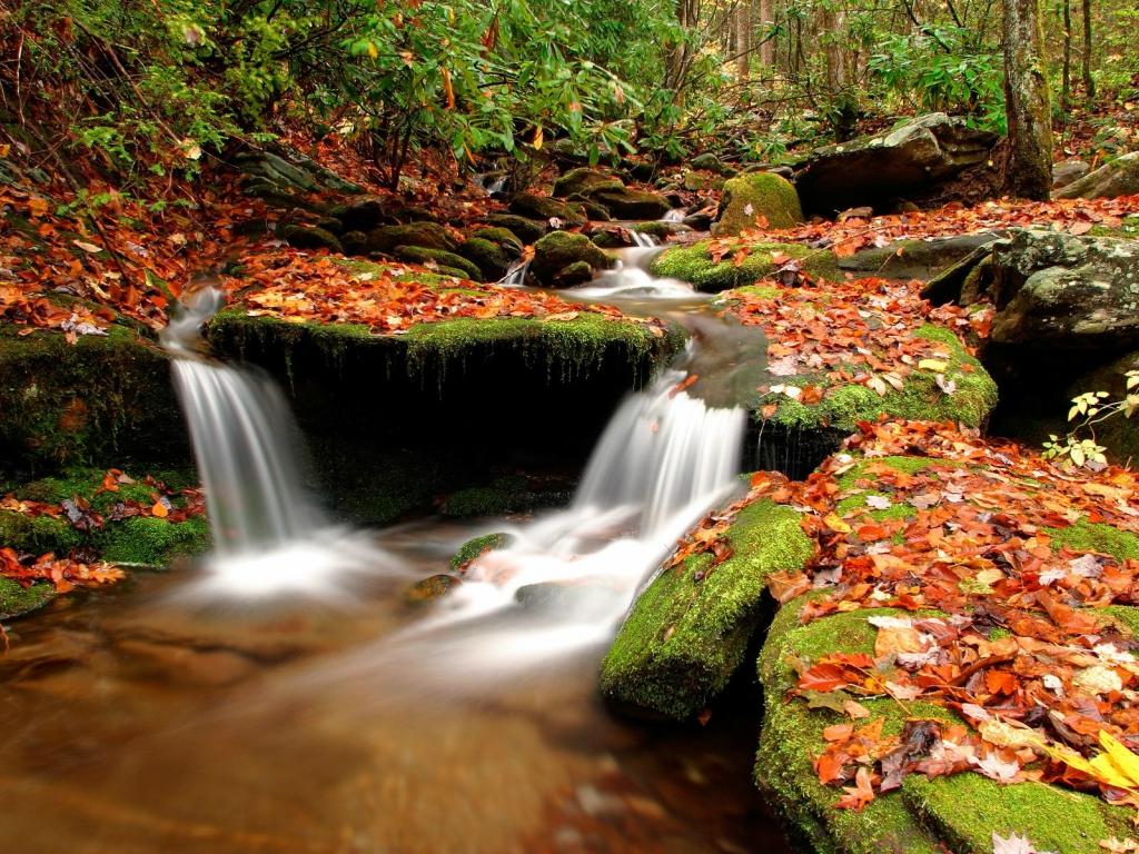 Осень фото пейзажей высокого - 3