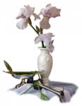 цветы (129).png