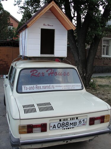 Rex House