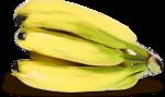 «kimla_Spring_Cooking»  0_91040_2f3e6659_S