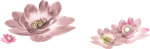 «Dreamin Pink» 0_99b1a_ba9ad454_S