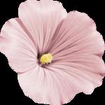«Dreamin Pink» 0_99b32_a4437bec_S