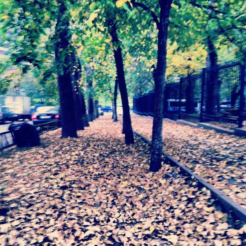 Прогулки за город