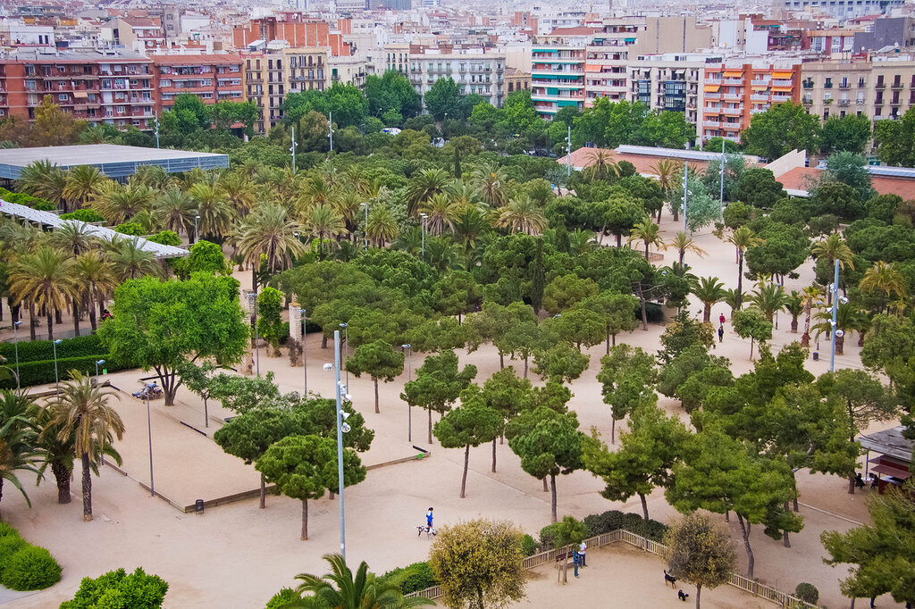 Басрелона, Испания