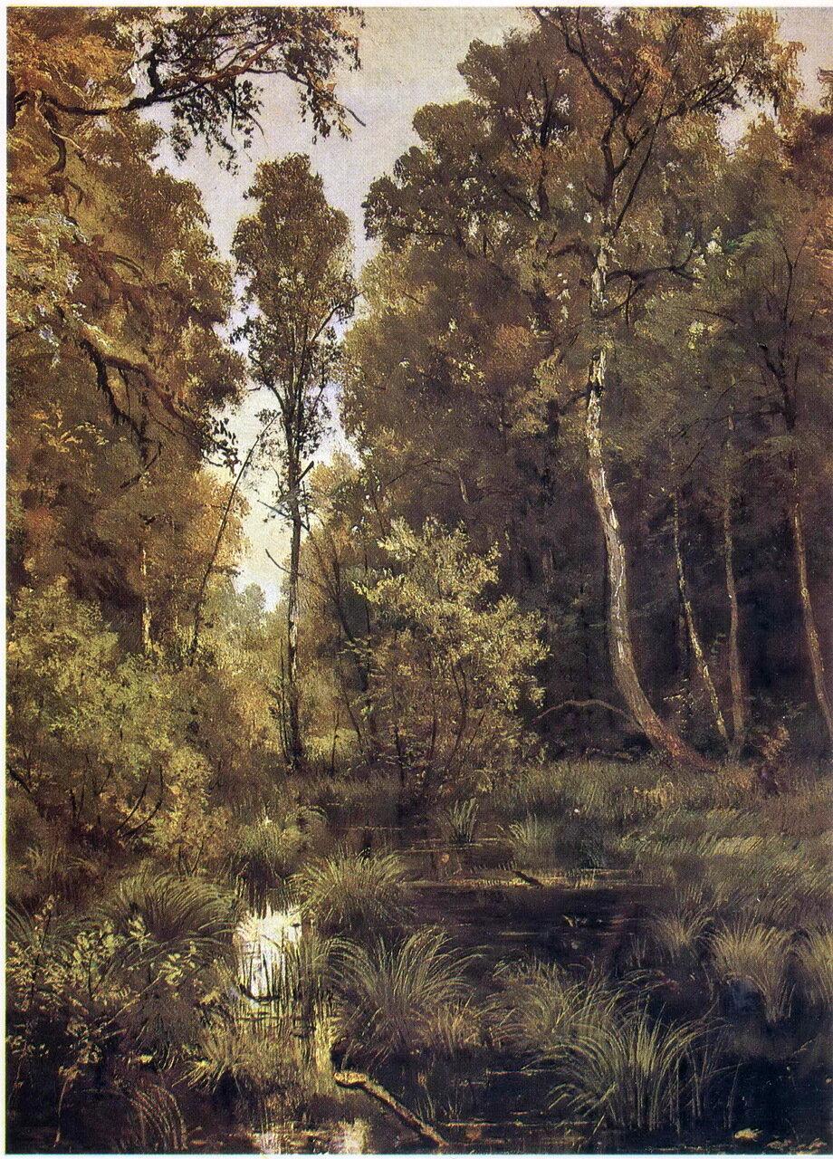 Шишкин Заросший пруд у опушки леса. Сиверская. 1883