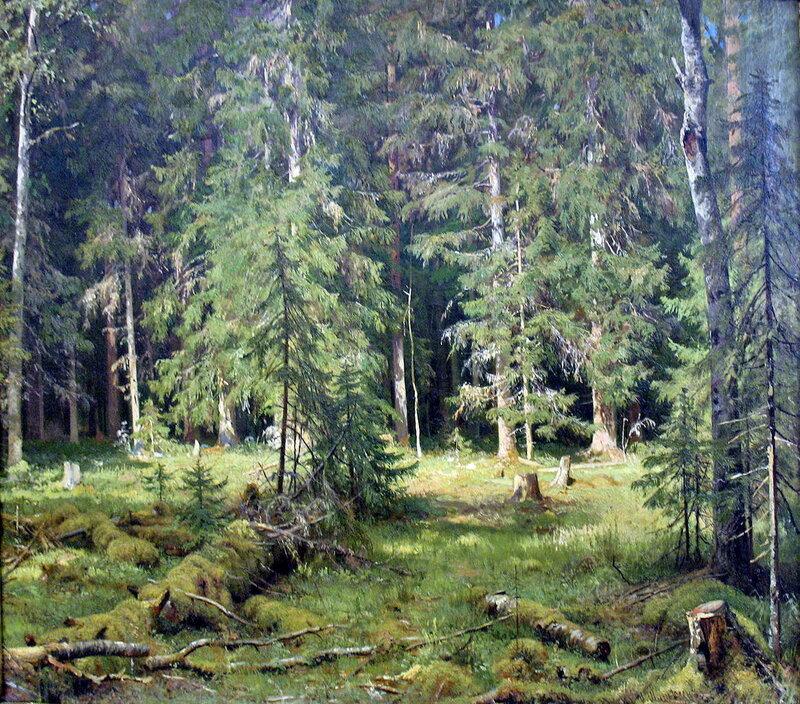 Лес. И.И. Шишкин.jpg