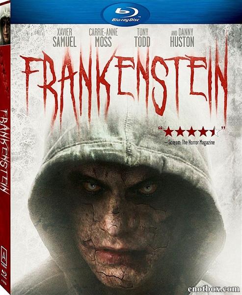 Франкенштейн / Frankenstein (2015/BDRip/HDRip)