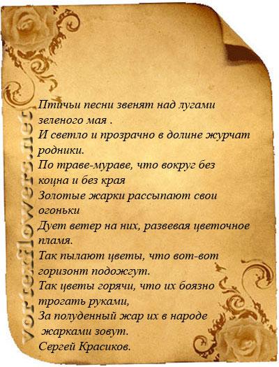 стихи о купальнице