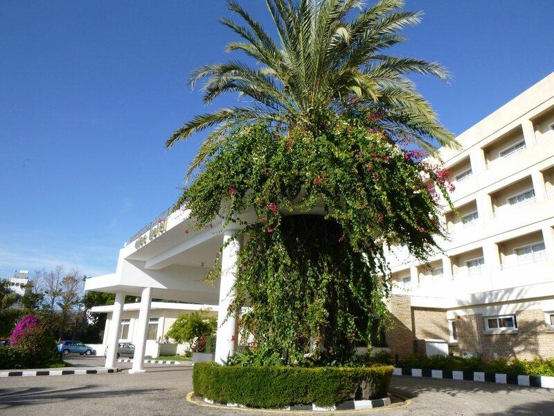 Пафос, Aloe Hotel 4*
