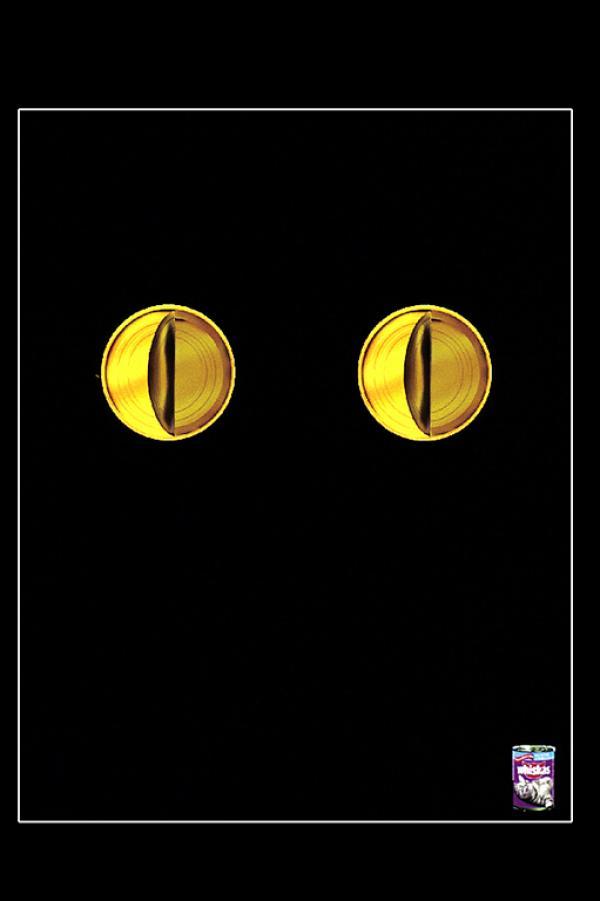 Кошачий корм Whiskas.