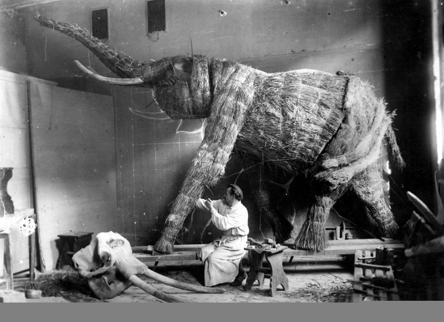 Ахматова и Слон