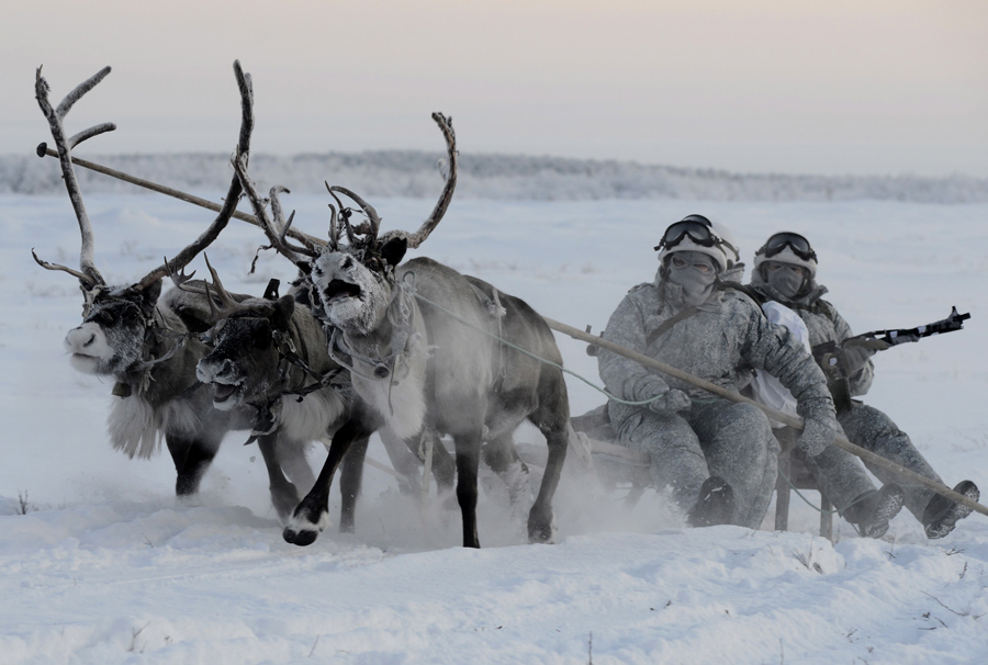 Russia's Arctic mechanized infantry unit holds military drills to learn how to ride a reindeer s