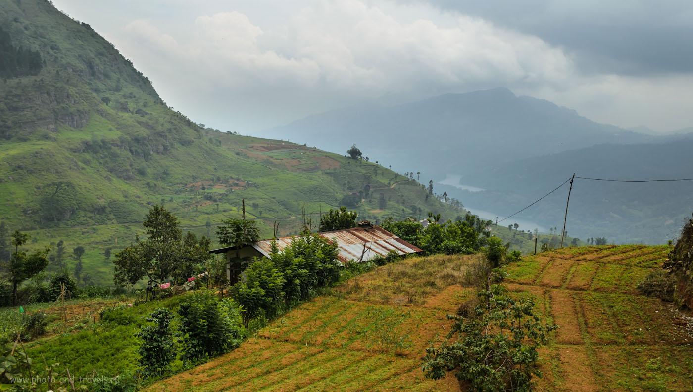 Фотография 15. Пейзажи, которые наблюдают туристы во время поездки на чайные плантации Шри-Ланки. Снято по пути из Nuwara Elya в Kandy.