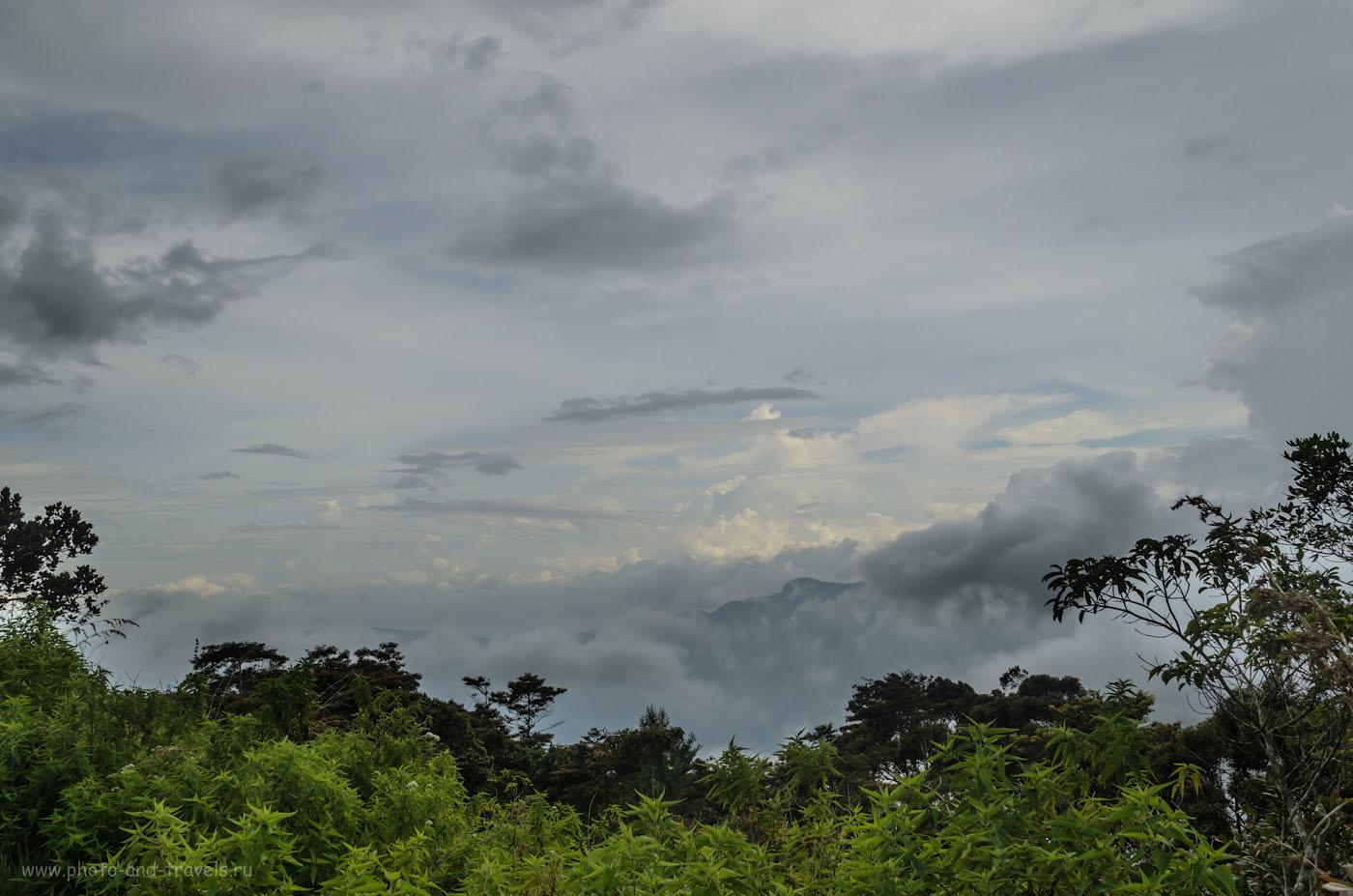 Фотография 17. Затерянный мир в горах Шри-Ланки. Отзыв о поездке на машине по секретной дороге через парк Хортон Плейнс в деревню Наллатанния у подножия Пика Адама. Самостоятельный отдых на Цейлоне.