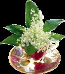 цветы (123).png