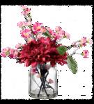цветы (167).png