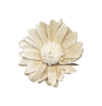 Palvinka_FlowerAdventure_flower4.png