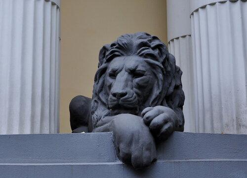 Львы в Москве