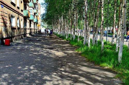 Фотография Инты №7716  Южная сторона Горького 2 21.06.2015_12:53