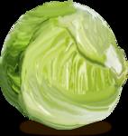 «kimla_Spring_Cooking»  0_91058_c5bd021f_S