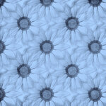 «Denim And Daisies» 0_94275_1fc19e6d_S