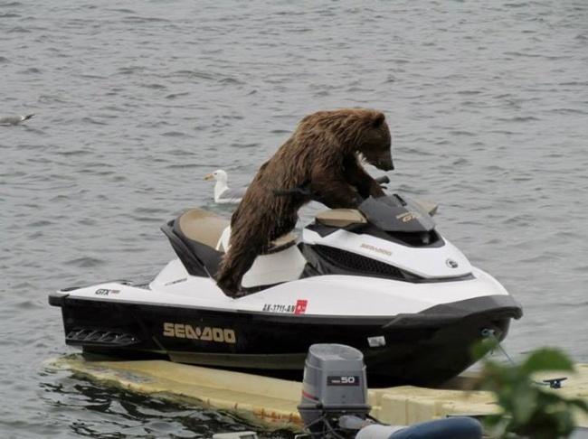 Суровая российская береговая охрана.