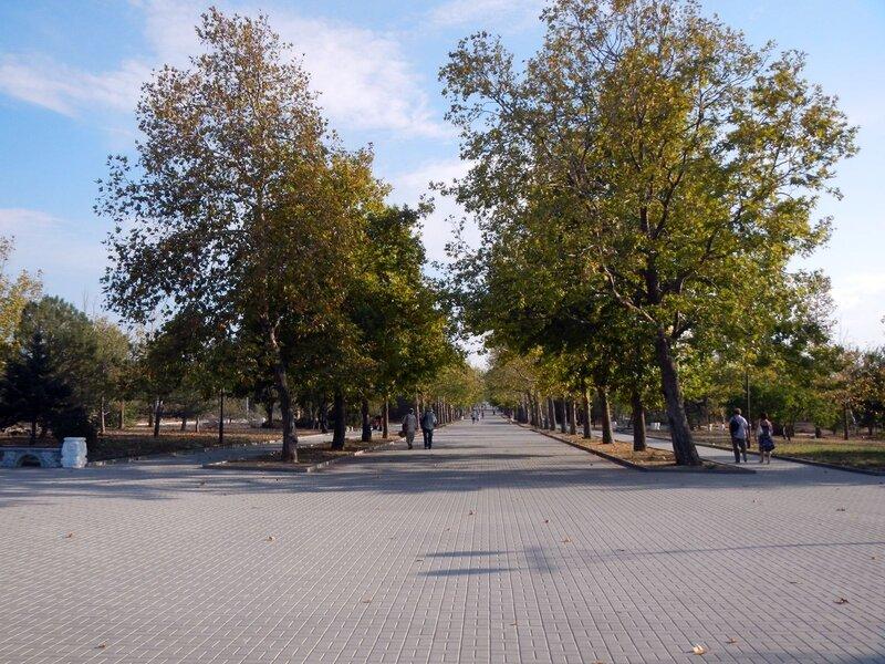 аллея парка победы