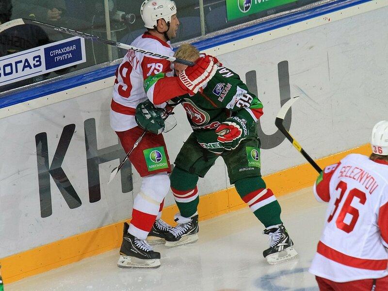 Ак Барс - Витязь(Фото).