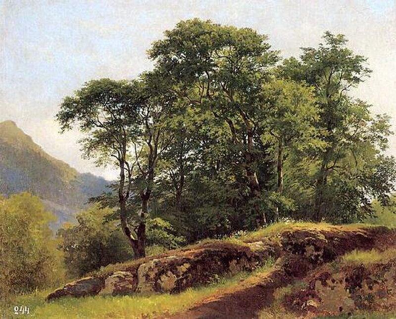 Буковый лес в Швейцарии. И.И. Шишкин.jpg