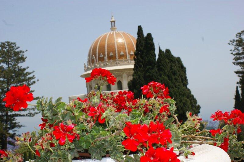 семейная картинки израильские цветы один рабочих дней